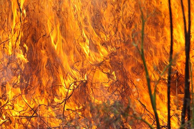 Sodom and Gomorrah destroyed