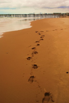 the footsteps of Christ